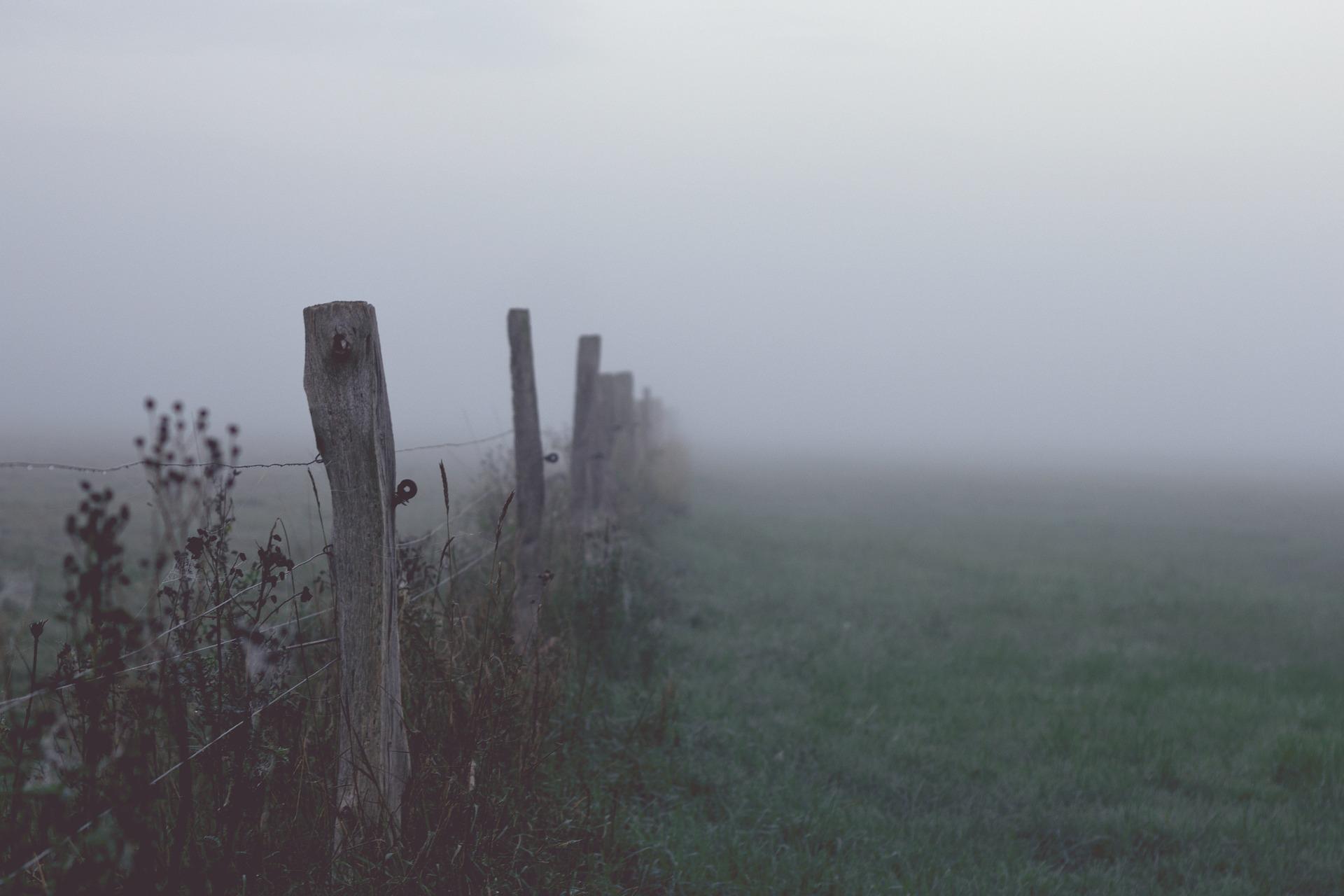 fog-1494431_1920.jpg